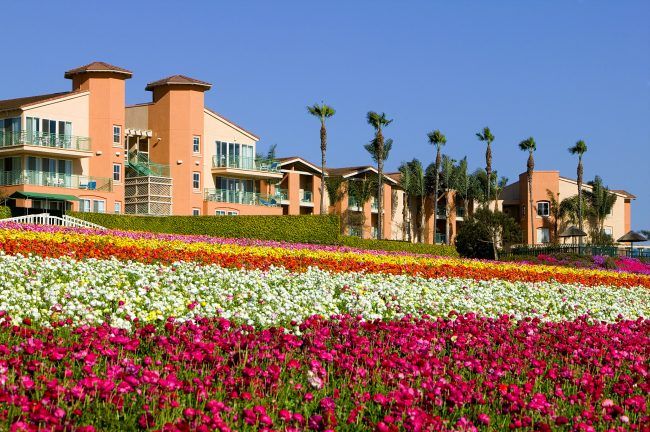 Grand Pacific Resorts, Palisades - Carlsbad, CA