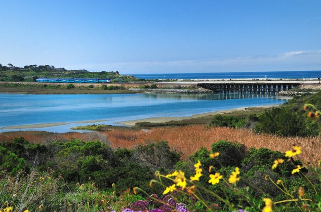3 Fun Places in Carlsbad that Don't Cost a Dime
