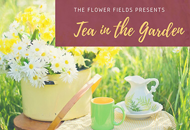 Tea in the Garden Flower Fields Carlsbad